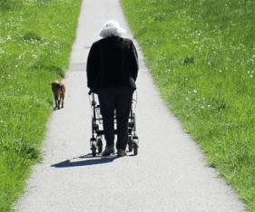 four-wheeled walker